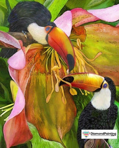 Ships From USA - Birds in the Jungle 40x30cm Free Diamond Painting
