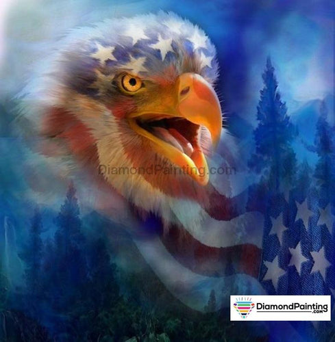 Ships From USA - Freedom Eagle 20x30cm Free Diamond Painting