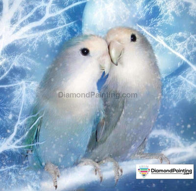White Birds In Love