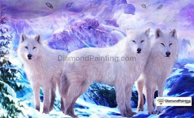 White Wolf Snow Party