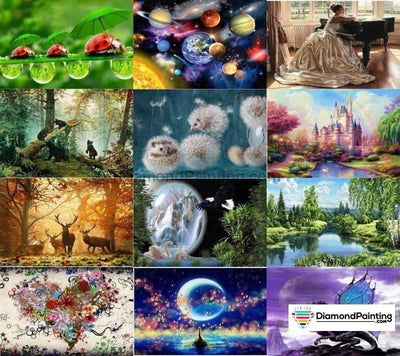 Wonders Of Life Collection