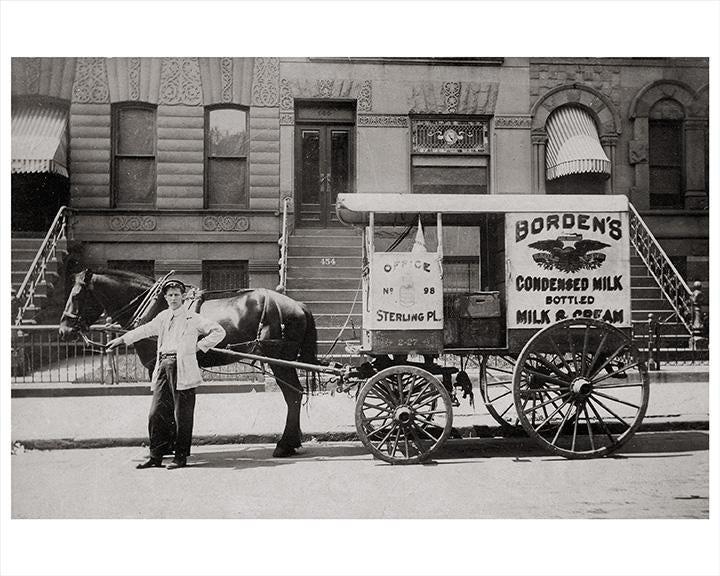 14th Street Park Slope Bordens Milk Wagon, Horse Drawn Cart Photos, Images and Photography