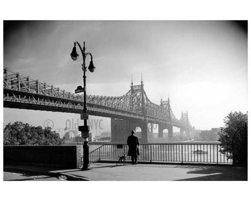 A man & his dog gaze at the Queensboro Bridge from Riverview Terrace 1910  -  Queens, NY Old Vintage Photos and Images