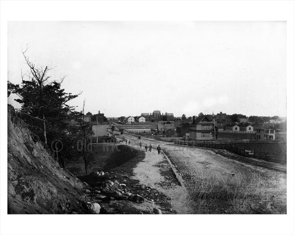 Albany Ave - Pig Town 1898 Old Vintage Photos and Images