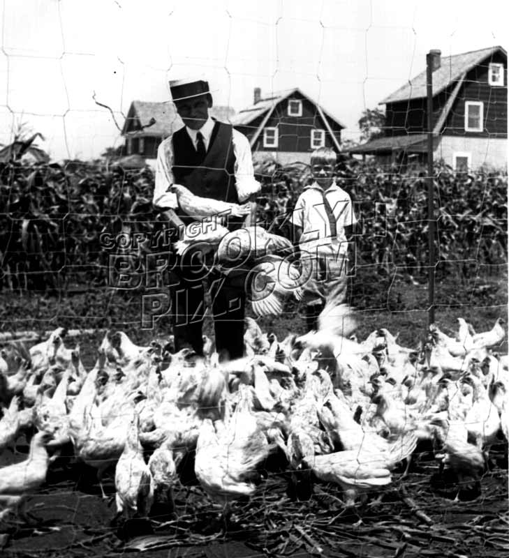 Chicken farmer, Canarsie, c.1940 Old Vintage Photos and Images