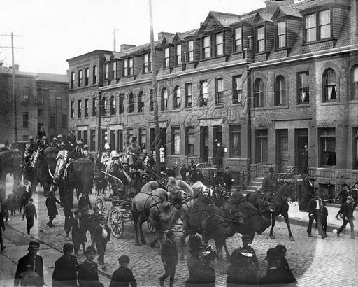 Circus procession through Fort Greene, c.1880s Old Vintage Photos and Images