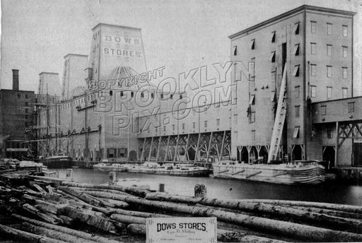 Dow Stores and dock, foot of Pacific Street, 1882 Old Vintage Photos and Images