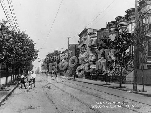 Halsey Street, 1909 Old Vintage Photos and Images
