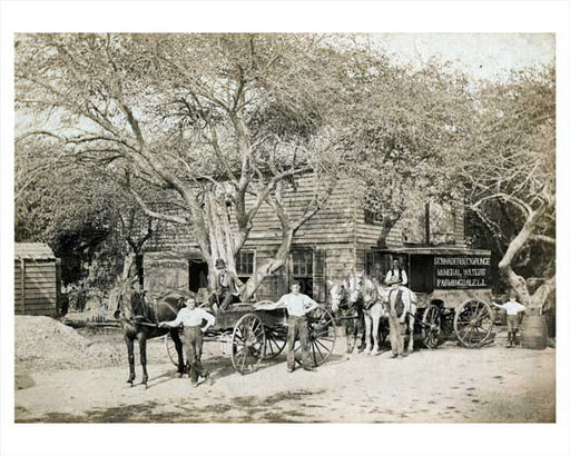 Horse & Wagon on a Farmingdale Farm -  Long Island NY 1900 Old Vintage Photos and Images