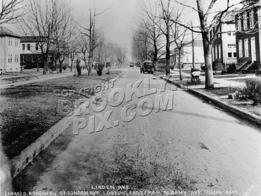Linden Avenue (Boulevard) east from Albany Avenue, 1924 Old Vintage Photos and Images