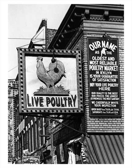 Live Poultry Market 1 Old Vintage Photos and Images