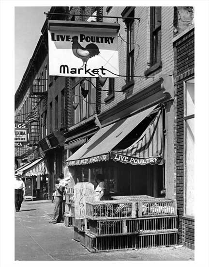 Live Poultry Market 2 Old Vintage Photos and Images