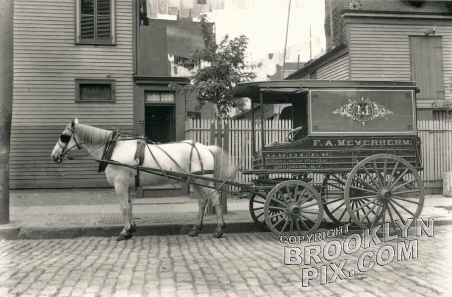 Meyerherm's grocery wagon, 1833 Gates Avenue at Stuyvesant Avenue, 1910