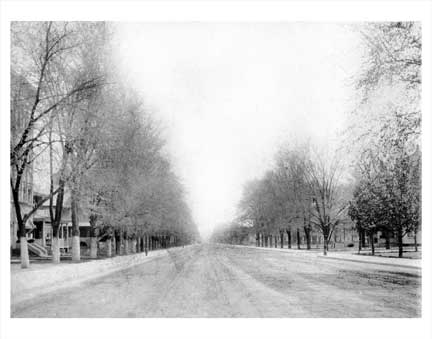 Ocean Avenue 1900 Flatbush Brooklyn NY Old Vintage Photos and Images