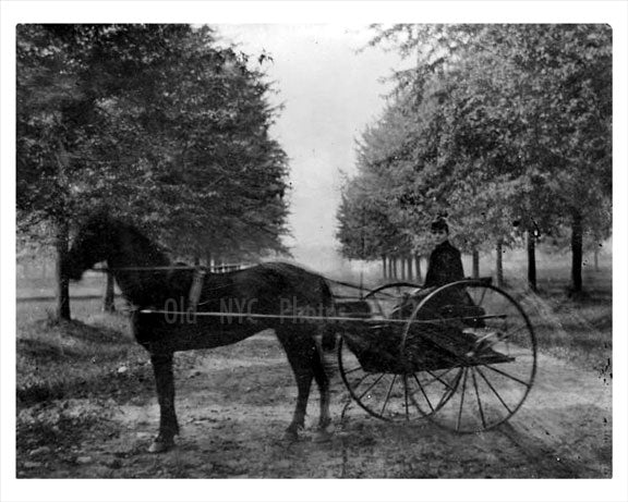 Ocean Parkway 1885 Old Vintage Photos and Images