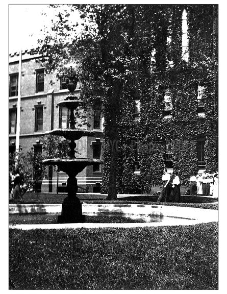 Packer Gardens 1913 Old Vintage Photos and Images