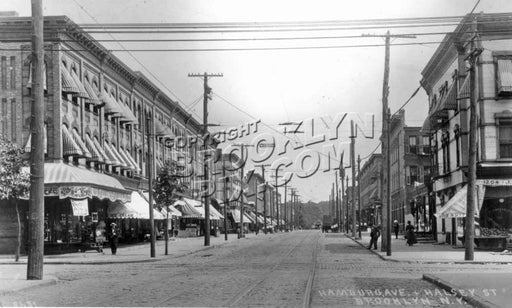 Wilson Avenue looking east to Halsey Street, c.1908 Old Vintage Photos and Images