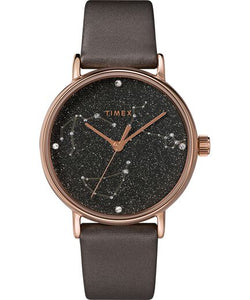 TIMEX Celestial Watch TW2T87700