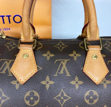 Load image into Gallery viewer, Preloved Louis Vuitton Mono Speedy 25B