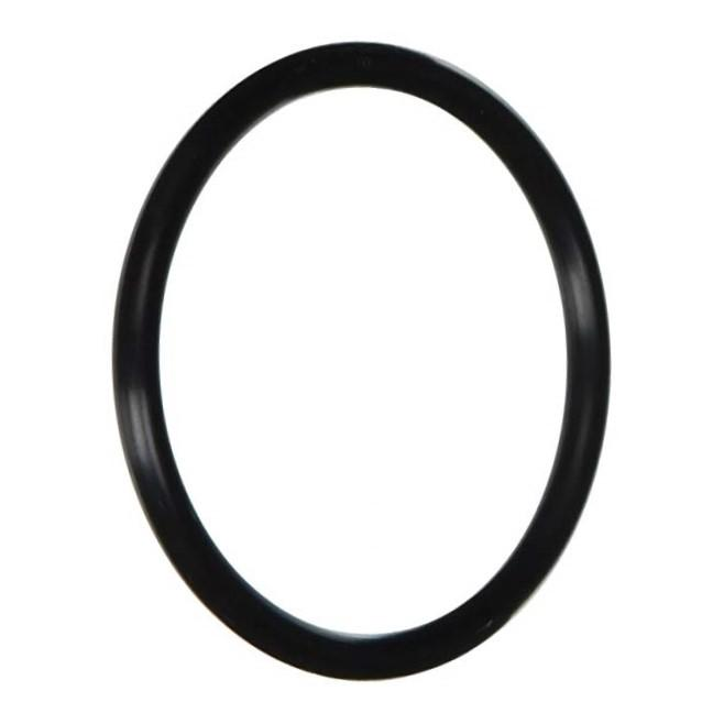 Pentair/Sta-Rite Dyna-Pro Diffuser O-Ring (P/N: U9-374) - Aqua-Tech