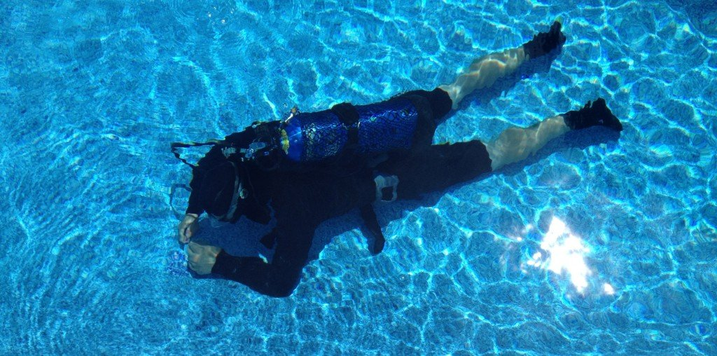 Dive Pool and Inspect for Leaks (sku SVC2208c)