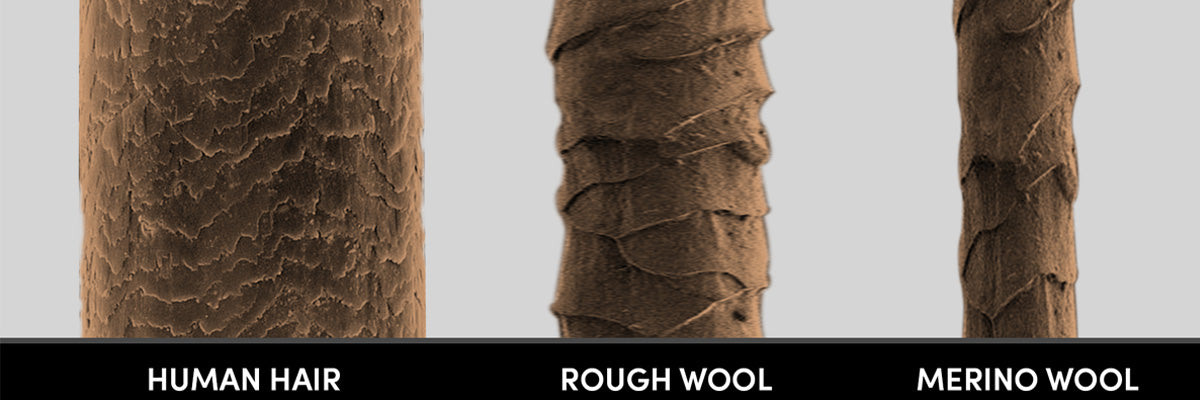 difference between human hair and Merino wool