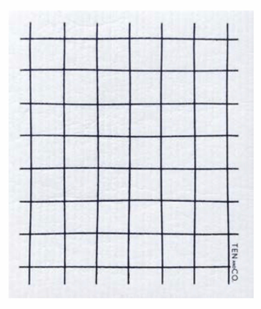Grid ~ Black • Sponge Cloth