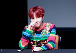 [BTS] J-Hope ''DNA'' Rainbow Sweater