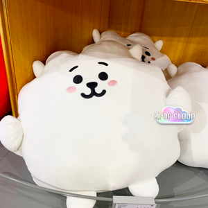 [BT21] Official PongPong Cushion Ver.30cm