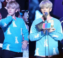 Load image into Gallery viewer, [EXO] Baekhyun ''Bunnies'' Pullover