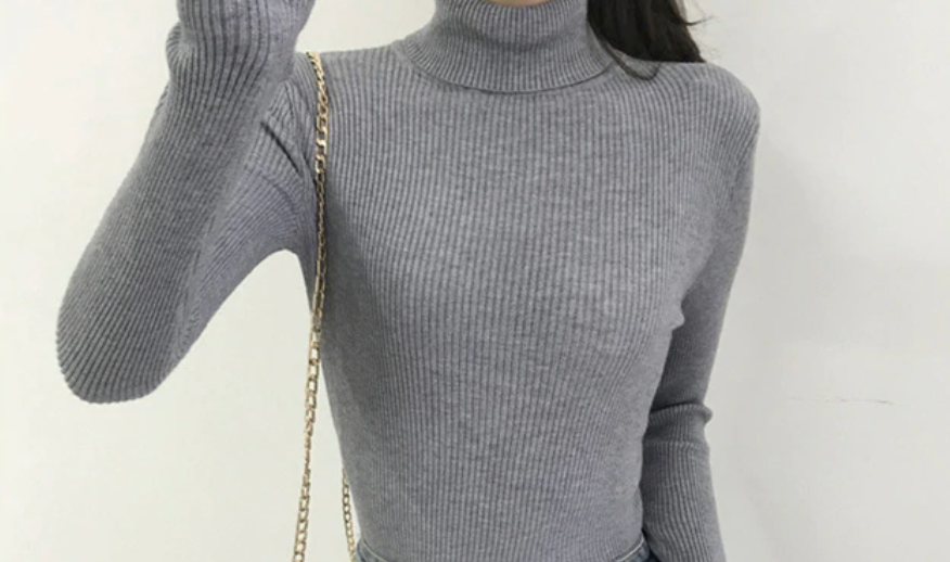 Coltrui / Basic pullover / Turtleneck sweater