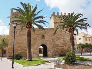 Best of Palma and Valldemossa Shore Excursion - Shared Group Tour
