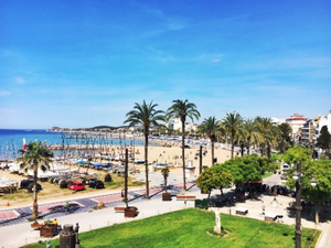 Palma Shore Excursion with Beach Stop - Shared Group Tour