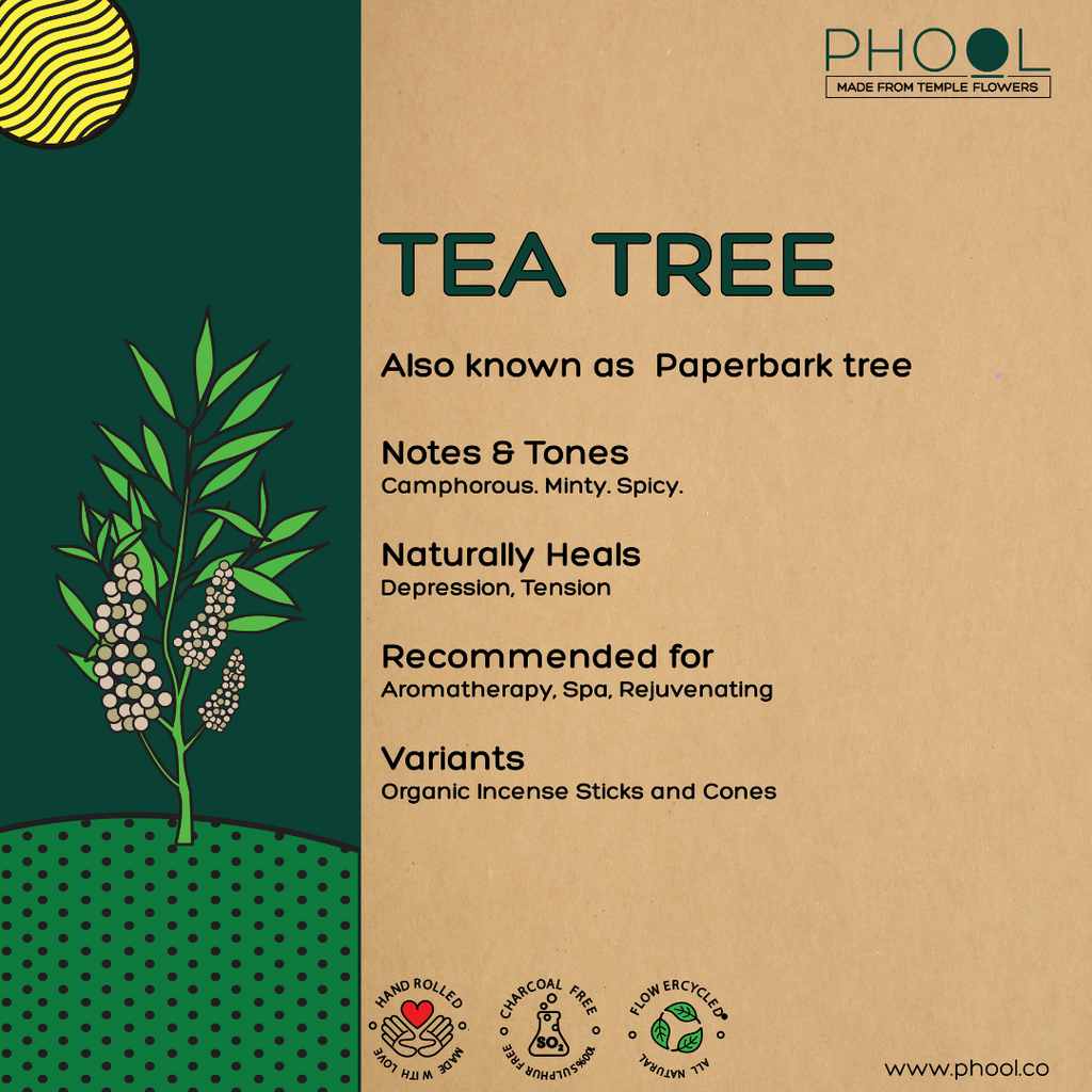 Phool Natural Incense Cones – Tea Tree