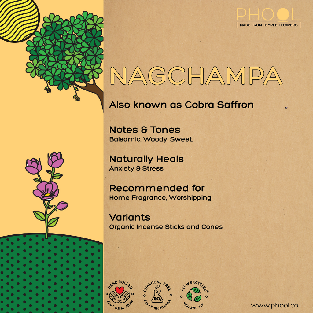 Phool Natural Incense Cones – Nagchampa