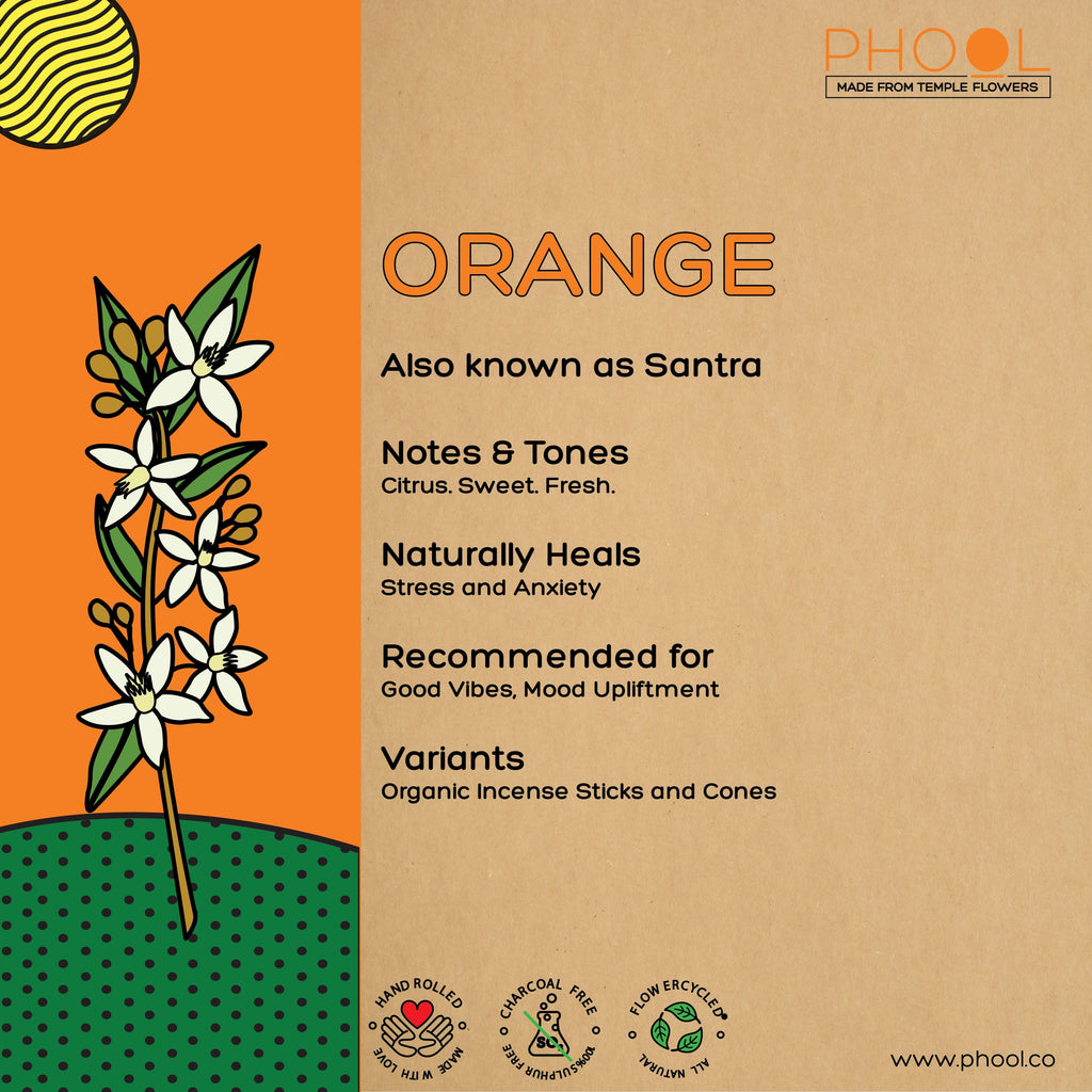 Phool Natural Incense Cones - Orange