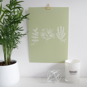 Herbs Illustration Print