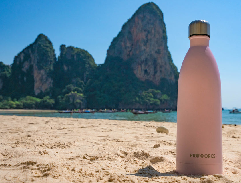A Reusable Stainless Steel Water Bottle from Proworks