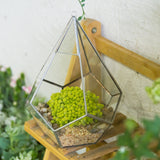 Modern Polyhedron Diamond Teardrop Shape Geometric Wall Mount Hanging Glass Planter Plant Succulent Flower Pot Glass Terrarium