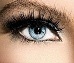 Professional Magnetic Eyelashes