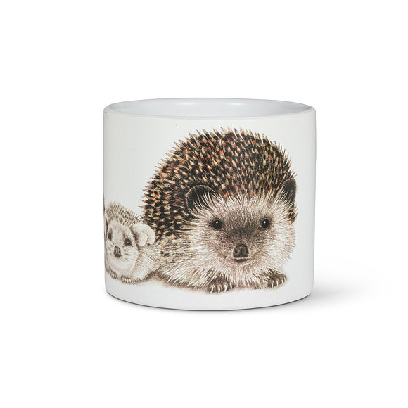 Hedgehog Family Planter 4.5