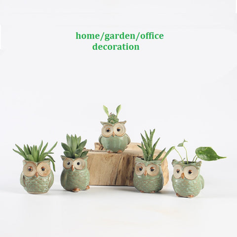 5pc/set Cartoon Owl-shaped Flower Pot for Succulents