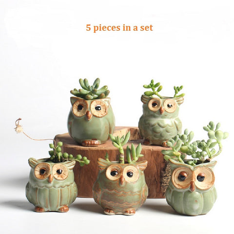 Image of 5pc/set Cartoon Owl-shaped Flower Pot for Succulents
