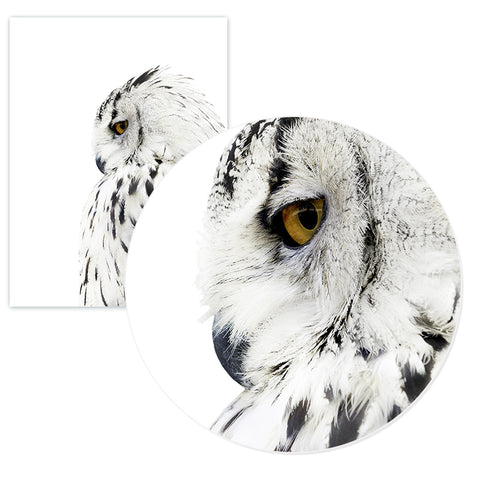 Image of Nordic Owl Canvas Painting