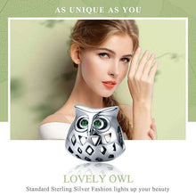 Load image into Gallery viewer, Lovely Owl Openwork - Origin Silver