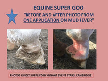 Equine Super Goo - The Original Topical Cream - Toowoomba Horse Rug Washing