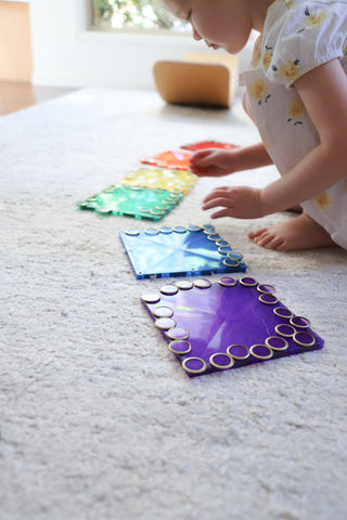 Connetix Tiles and metal Rimmed Counting Chips
