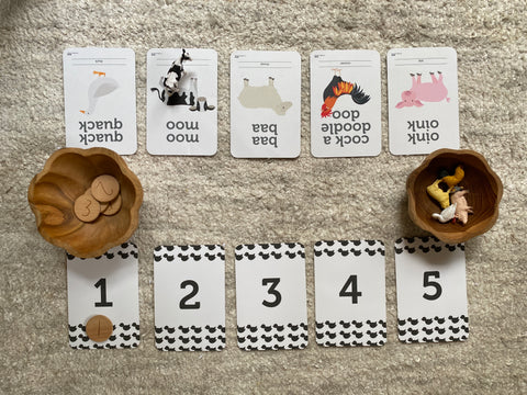 Flashcards invitation to play siblings