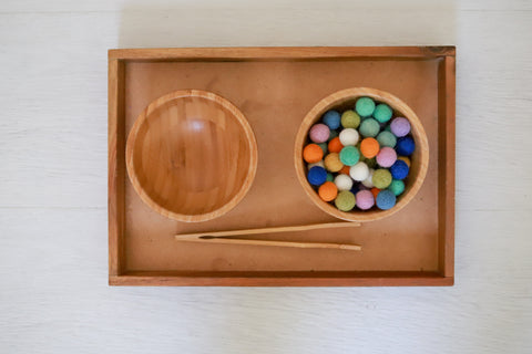 Montessori-inspired transferring activity with two bowls set up for toddler.