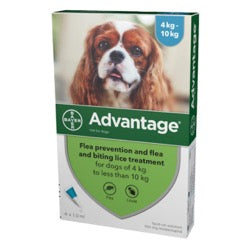 Advantage 100 Flea Treatment 4-10kg (Dogs)